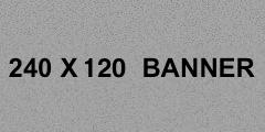 240x120BannerSample